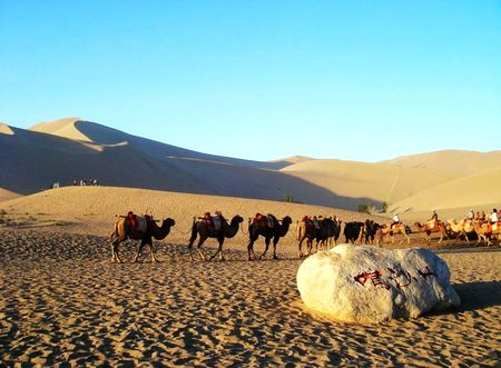 Silk Road Discovery
